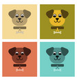 assembly flat icons pet dog vector image vector image