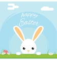 Easter bunny rabbit hole egg icon sky background vector image vector image