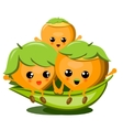 Family Of Cute Nuts On White Background vector image vector image