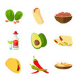 mexican taco burrito and nachos food avocado vector image vector image
