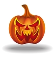pumpkins for Halloween vector image vector image