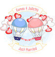 two cute kittens on hot air balloons surrounded vector image
