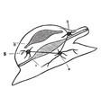 diagram of a mollusca vintage vector image vector image