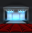 empty theatre stage with spotlight lighting vector image vector image