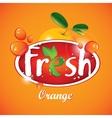 fresh orange juice vector image vector image
