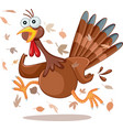 funny turkey running cartoon vector image