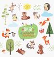 baby woodland animals design set vector image