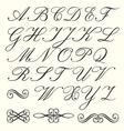 script alphabet vector image