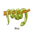 Boa snake cartoon vector image vector image