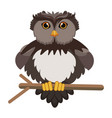 cartoon owl sitting on tree branch flat vector image