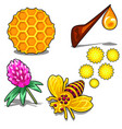 healthy honey set of five items isolated vector image vector image