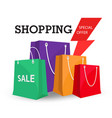 shopping special offer colorful bag background vec vector image vector image