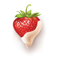 strawberry white chocolate vector image vector image