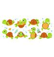 turtle characters cartoon tortoise smile turtles vector image