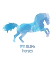 Wildlife banner - horses vector image vector image