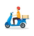 Courier Delivering Pizza vector image