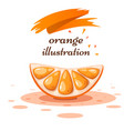 cartoon orange on the white background vector image vector image