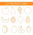 Fruits icon set Colorful template for cooking vector image vector image