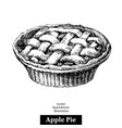 hand drawn sketch homemade organic apple pie vector image