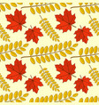 seamless pattern with maple and acacia leaves vector image
