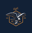 the flying eagle emblem vector image vector image