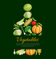 vegetables and organic veggies poster vector image vector image