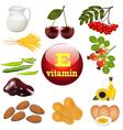 vitamin E the origin vector image vector image