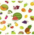 banana and watermelon cherry and pineapple fruits vector image vector image