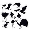 Exotic Birds Silhouettes vector image vector image