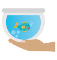 hand with fish in aquarium vector image vector image