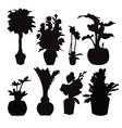 pot plant 38 vector image