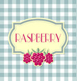 raspberry label in retro style on squared vector image