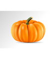 realistic pumpkin isolated on transparency vector image vector image