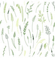 seamless pattern of herbs plants flowers and vector image vector image